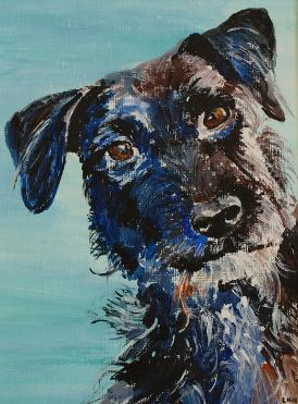 Acrylic painting of Patterdale Terrier